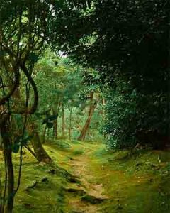 forest path representing lifes path on the journey